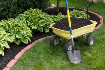 Cedar Mulch Prices in NJ