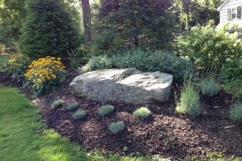 Boulders For Your Landscape