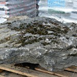 Moss Rock Boulder for Sale in NJ and NY