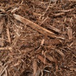 Natural Cedar Mulch for Sale in NJ
